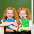 Portrait of lovely twins girls — Stock Photo