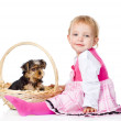 Baby Girl and Yorkshire Terrier puppy.  — Stock Photo