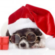 Cute puppy with red gift box and santa hat. Isolated on white background — Stock Photo #37383431