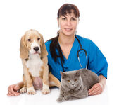 Veterinarian hugging cat and dog. — Stock Photo