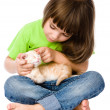 Little girl stroking kitten. — Stockfoto #39249037