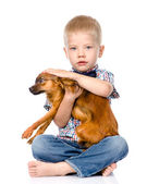 Little boy patting dog head — Stock Photo