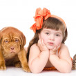 Stock Photo: Girl with pets - dog and cat.
