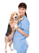 Portrait of a veterinarian with a dog. — Stock Photo