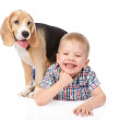Stock Photo: Boy has fun with a puppy