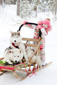 Little girl and Huskies in winter forest — Stock Photo
