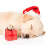 Golden retriever puppy dog with gift and santa hat — Stock Photo