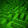 Stock Photo: Green maze