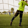 Goalkeeper — Stock Photo #13752618