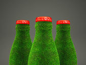 Grass bottle — Stock fotografie