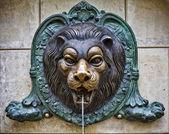 Bronze lion — Stock Photo
