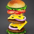 Hamburger — Stock Photo #14632695