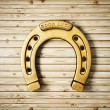 Horseshoe — Stock Photo #24379965