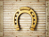 Horseshoe — Stock Photo
