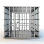 Cage — Stock Photo #26043231
