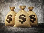 Money bag — Stock Photo