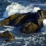 ������, ������: Rocky Ocean Shore