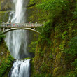 Stock Photo: Oregon Multnomah Falls