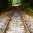 straight railroad tracks — Stock Photo