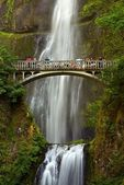 Multnomah falls — Stockfoto