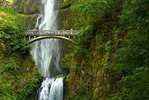 Oregon Multnomah Falls — Stock Photo