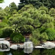 Botanic Garden - Stock Photo
