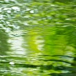 Stock Photo: Green Waters