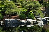 Japanese Garden with Pond — Stock Photo