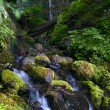 Rocky Creek - Stock Photo