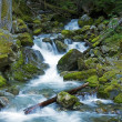 North Cascades Creek — Stock Photo