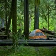 Camping and Tent — Stock Photo #17626361
