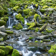 Stock Photo: Rocky and Mossy Creek