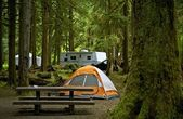 The Campground — Stock Photo