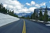 Montana Mountain Road — Stock Photo