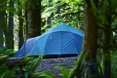 Tent Camping — Stock Photo