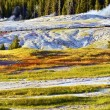 Stock Photo: Yellowstone Harsh Conditions