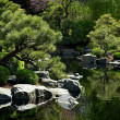 Japanese Garden — Stock Photo #17667911
