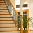 Stock Photo: Hardwood Stairs