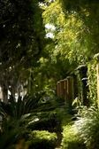California Front Yards — Stock Photo