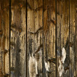 Stock Photo: Knotted Wood