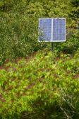 Solární energie v zahradě — Stock fotografie