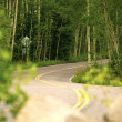 Stock Photo: Aspen Colorado Road