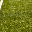 Stock Photo: Sport Grass Field with Line