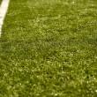 campo de hierba de deporte con línea — Foto de Stock