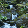 Water Cascades Creek — Stock Photo