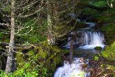 Kleine kreek watervallen — Stockfoto