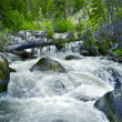 Small Mountain River — Stock Photo
