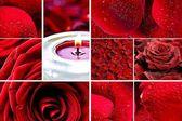 Rode rozen mozaïek — Stockfoto