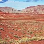 Raw Utah Landscape — Stock Photo