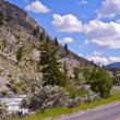 Stock Photo: Yellowstone NP Road